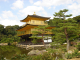 Guided Japan Tours