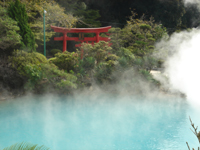 Escorted Japan tours